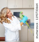 veterinarian examining the... | Shutterstock . vector #1193733664