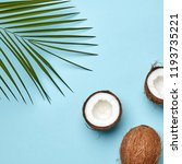 a coconut and palm green leaf... | Shutterstock . vector #1193735221