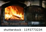 fire roaring and burning wood... | Shutterstock . vector #1193773234