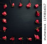 goth style dry red roses on... | Shutterstock . vector #1193816017