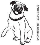 Dog Pug Breed Black And White...