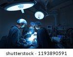 group of veterinarian surgery... | Shutterstock . vector #1193890591