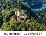 hohenschwangau castle  schloss...   Shutterstock . vector #1193964997
