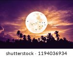 tropical night. full moon and... | Shutterstock . vector #1194036934