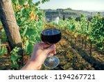 dark red wine in glass of... | Shutterstock . vector #1194267721