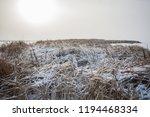 winter landscape. the river... | Shutterstock . vector #1194468334