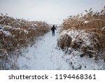 winter landscape. a man walks... | Shutterstock . vector #1194468361
