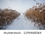 winter landscape. the river... | Shutterstock . vector #1194468364