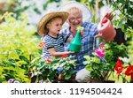 gardening with kids.... | Shutterstock . vector #1194504424