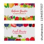 vector vegetable and berries...   Shutterstock .eps vector #1194557557