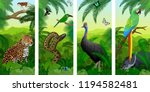 vector jungle rainforest... | Shutterstock .eps vector #1194582481