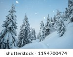 christmas view in the snowfall...   Shutterstock . vector #1194700474