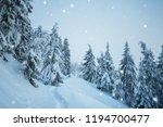 white christmas. snowfall in... | Shutterstock . vector #1194700477