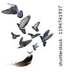 nine doves flying from large... | Shutterstock . vector #1194741937
