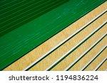 close up of new modern sandwich ...   Shutterstock . vector #1194836224