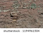 obsolete weathered cracked... | Shutterstock . vector #1194961504