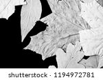 dry autumn leaves as a... | Shutterstock . vector #1194972781