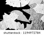 dry autumn leaves as a... | Shutterstock . vector #1194972784