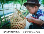 son are picking tomatoes in the ... | Shutterstock . vector #1194986731