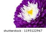 macro background of aster... | Shutterstock . vector #1195122967