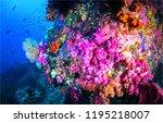 underwater world scene. pink... | Shutterstock . vector #1195218007
