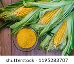 fresh sweet corn with a bowl of ... | Shutterstock . vector #1195283707