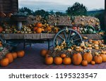 a rustic autumn still life with ... | Shutterstock . vector #1195323547