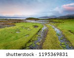 a track leading down to salen... | Shutterstock . vector #1195369831