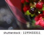 red fruits bouquet | Shutterstock . vector #1195433311