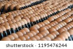 close up of fresh chicken eggs... | Shutterstock . vector #1195476244