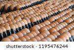 close up of fresh chicken eggs... | Shutterstock . vector #1195476244