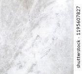 white marble texture | Shutterstock . vector #1195607827