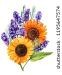 bouquets of lavender ... | Shutterstock . vector #1195647574