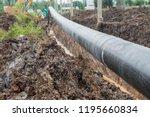 construction of oil pipeline... | Shutterstock . vector #1195660834