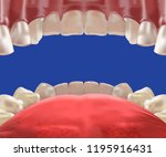 3d realistic mouth cavity  view ... | Shutterstock .eps vector #1195916431