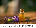 lavender essential oil in a... | Shutterstock . vector #1195967251