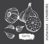 garlic collection  hand draw...   Shutterstock .eps vector #1196080381