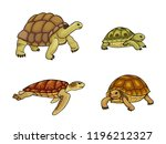 Stock vector set of tortoise and turtle vector illustration eps 1196212327