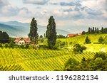 sulztal  gamlitz  leibnitz ... | Shutterstock . vector #1196282134
