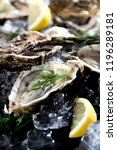 fresh opened oyster with sliced ... | Shutterstock . vector #1196289181
