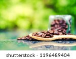 roasted coffee beans | Shutterstock . vector #1196489404