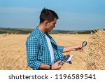male botanist with magnifying...   Shutterstock . vector #1196589541