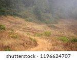 Narrow Dirt Path Curves Through ...