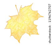 yellow maple leaf isolated on... | Shutterstock .eps vector #1196762707