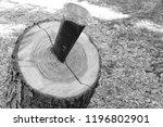 iron wedge splits wood trunk... | Shutterstock . vector #1196802901