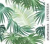 tropical jungle palm leaves... | Shutterstock .eps vector #1197035314