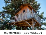 Treehouse For Kids In The...