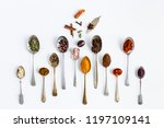 spice and herbs flat lay... | Shutterstock . vector #1197109141