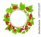 red currant vector frame | Shutterstock .eps vector #1197111157