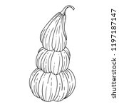 pumpkins isolated on white...   Shutterstock .eps vector #1197187147